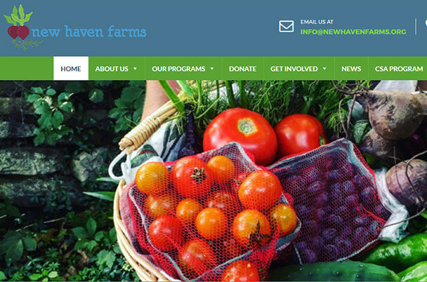 New Haven Farms - New Home Page