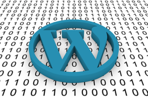 WordPress and 3PRIME Web Solutions